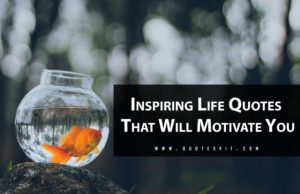 Inspiring Life Quotes That Will Motivate You