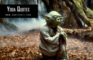 100+ Powerful Yoda Quotes, Saying About Patience, Love & Force